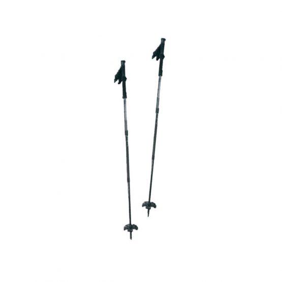 poles-trekking-snowshoes